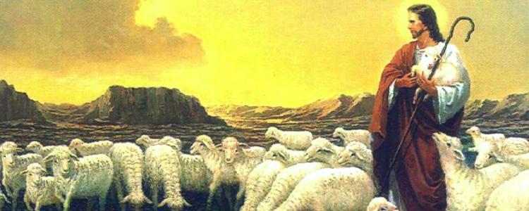"""Jesus Bom Pastor """"EU VIM PARA QUE TODOS TENHAM VIDA  A TENHAM EM ABUNDÂNCIA""""(Jo 10,10)"""